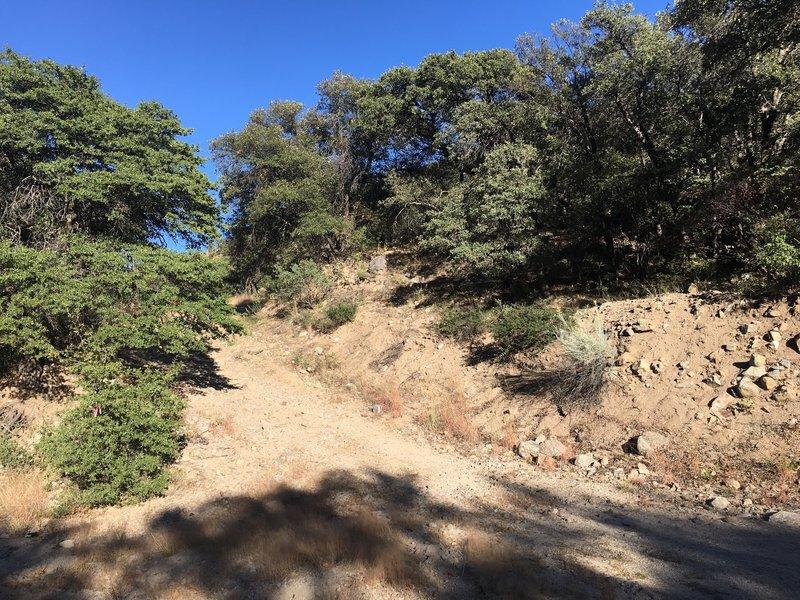 A hiking trail alongside the path.
