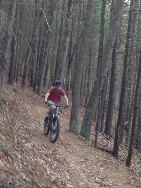 Fast section of Bear Bottom Trail.