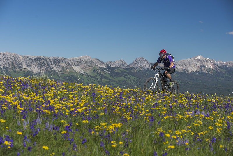 Views and wildflowers abound during a crisp springtime ride on the divide.