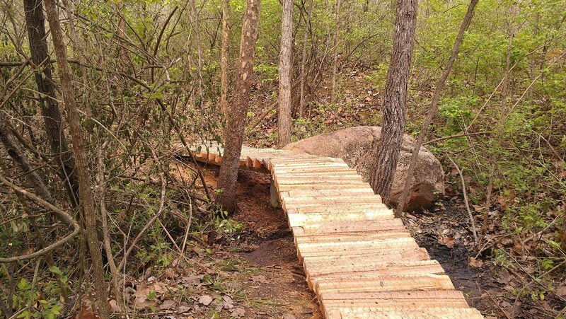 Elevated trail over a natural spring.