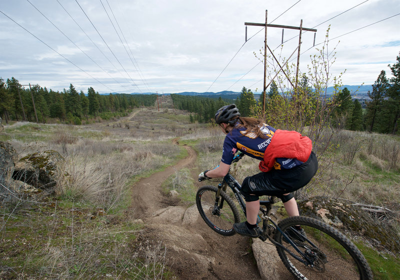 Vince's Tire Trail is short but it still manages to squeeze in some rocks.