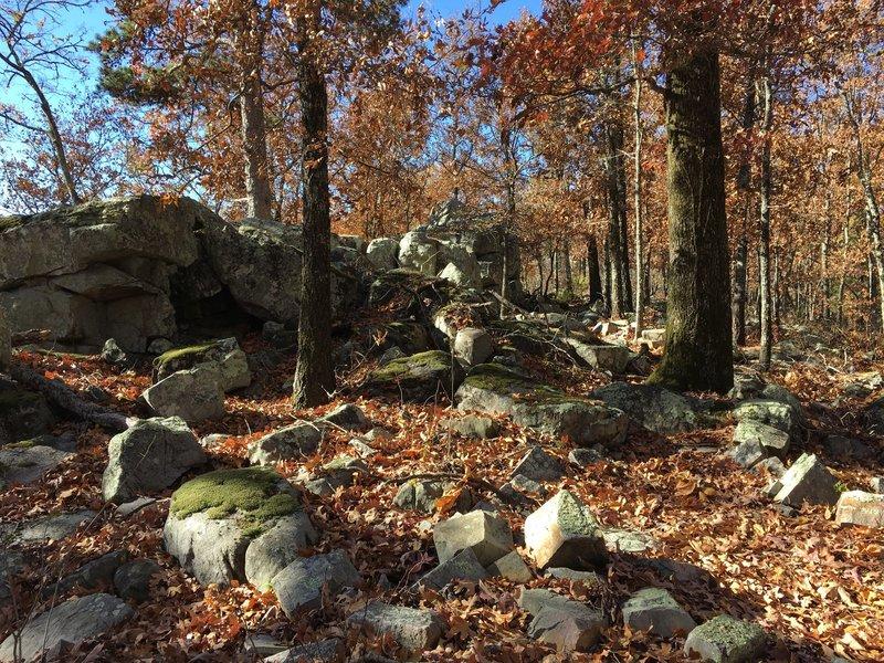 Challenging rock garden on the Rock Ridge Loop.