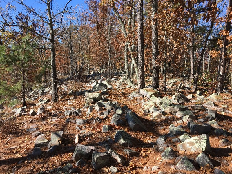 Rocky Ridge Loop