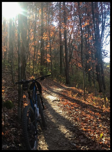 Trails here can be soft when wet, but when the conditions are dry, they are perfect-