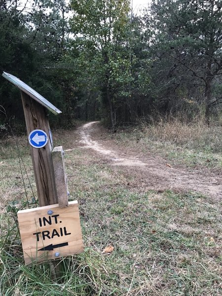 The junction of the Interpretive Trail with the Twin Lakes Trail