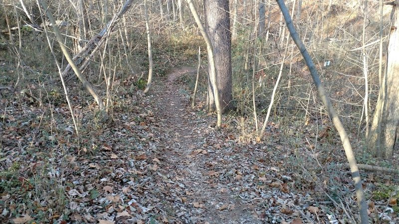 Heading down the Chisler Trail.