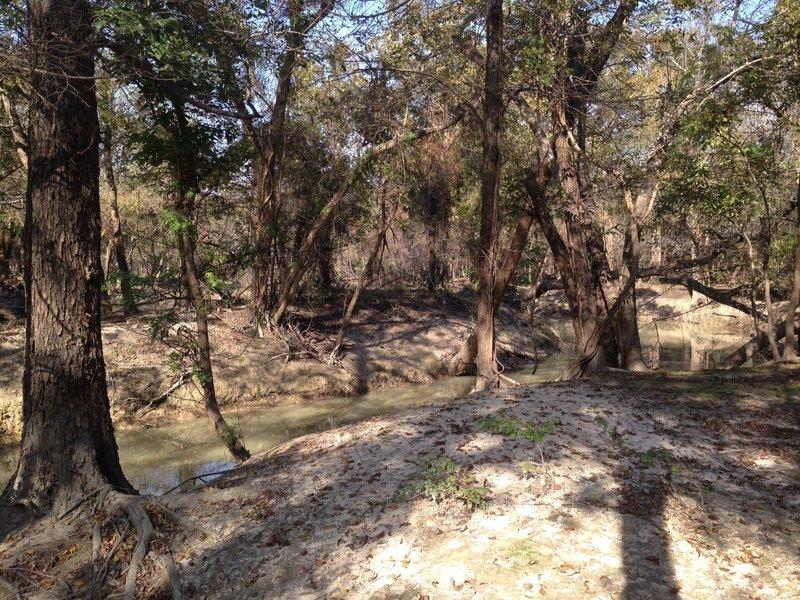 Eldridge to Langham Creek Trail: West End, viewing Langham/Bear Creek (November 2016)