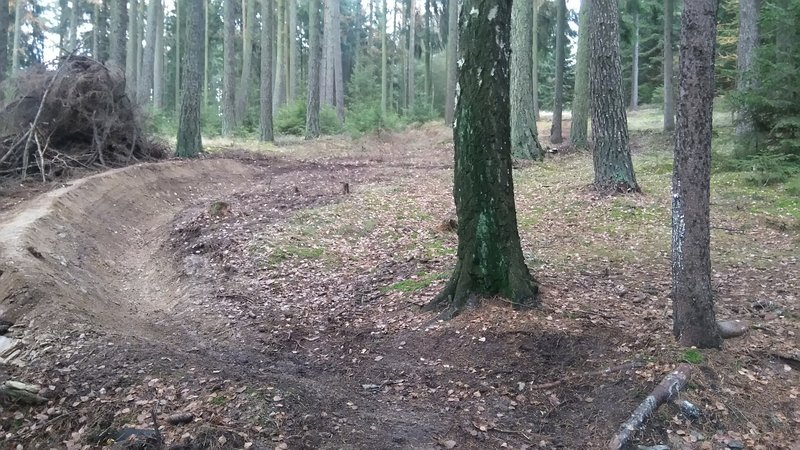 Fresh Berms await riders on the Old Downhill Trail.