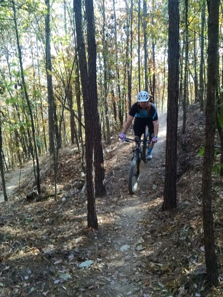 The tight pine trees on Peak Attack provide a welcome challenge for riders of all skill levels.