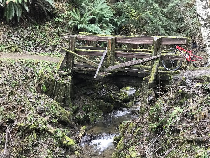 A small wooden bridge over flowing water keeps your feet dry on the OAT.