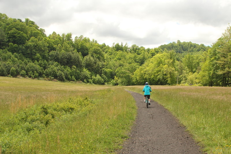 Crusing along the Virginia Creeper Trail.