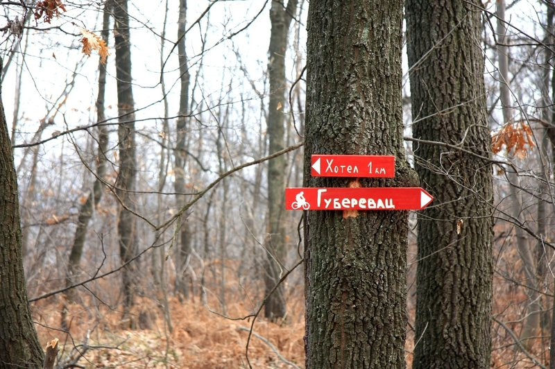 Trail signs along the Baberijus trail.
