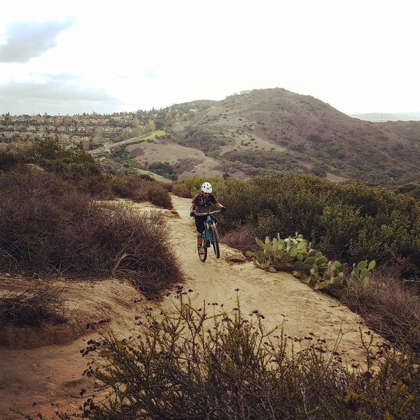 A rider wheelies a buffed section of the Cholla Trail in Aliso and Wood Canyons Regional Park.