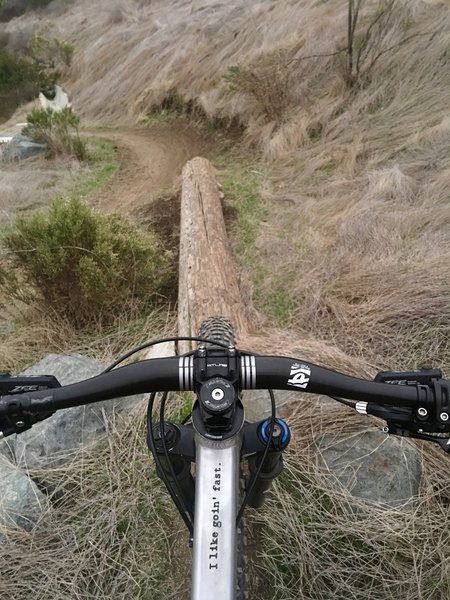 Optional Technical Feature: Log Ride installed on side of trail.