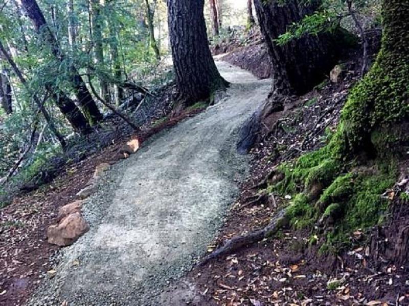 "Recent ""improvements"" to the Saratoga Gap Trail."