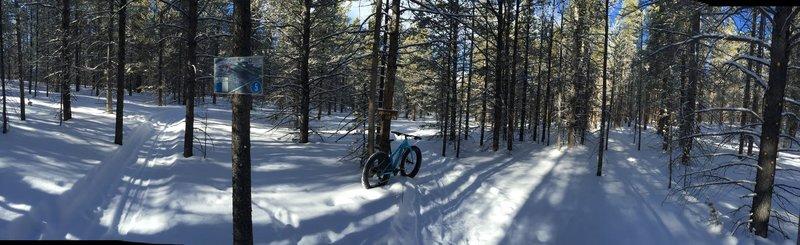 Perma Grin trail.