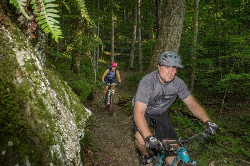 Sugar Maple Trail at Flag Rock Area Trails