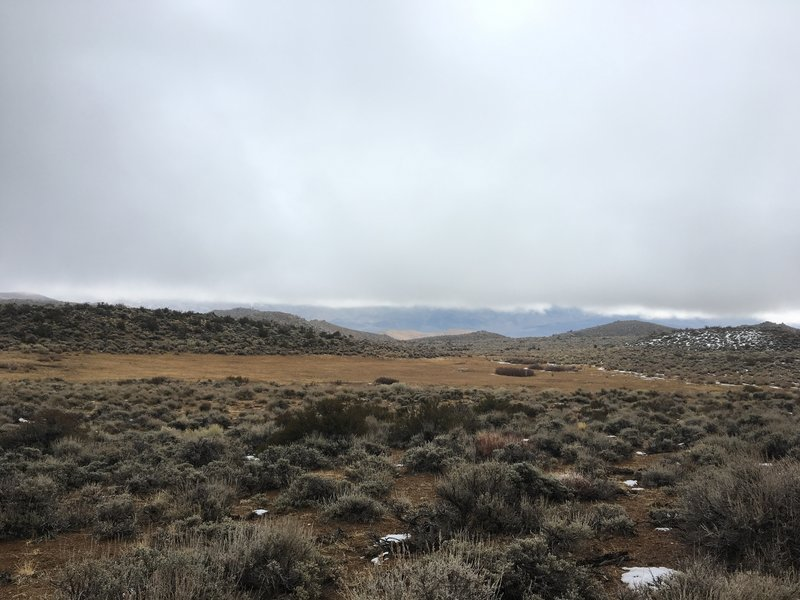 View of meadows and Owens Valley from 33E306.