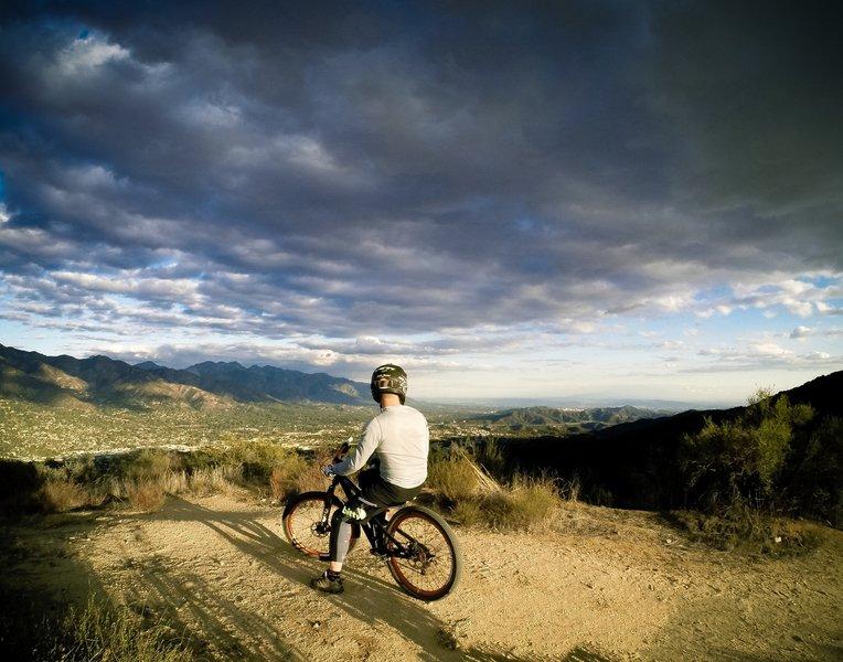 Looking East toward Mt. Wilson and Pasadena.
