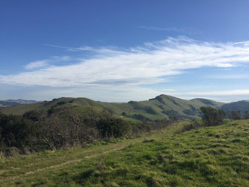 Heading towards the Belgum and San Pablo Ridge trail on a beautiful day.