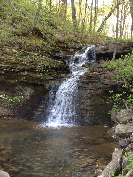 Alum Falls flows steadily in the spring.
