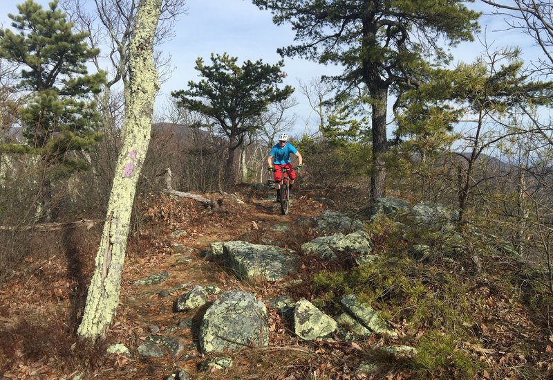 A short rock garden challenges riders just before the first DH.
