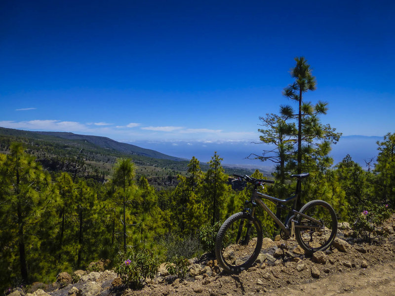 The trails on the south side of Tenerife offer more open views than north side trails because the forest cover is a lot thinner because of less rainfall