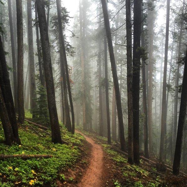 A foggy morning on Teocalli Ridge.