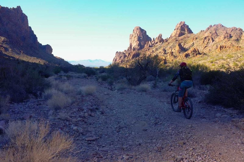 There's not a lot of shade in Kofa Queen Canyon unless the sun drops behind some of the rock formation.