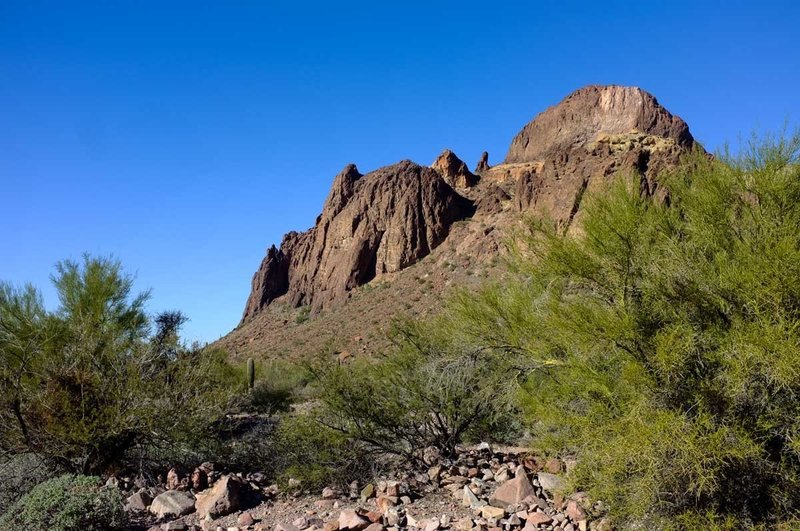 Distant rock towers decorate the backdrop in the Kofa Queen Canyon.