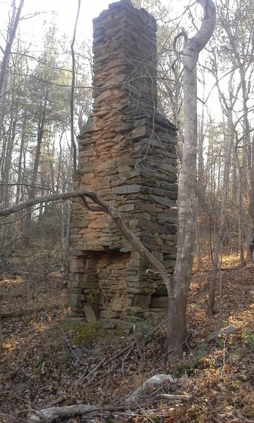 An old homestead fireplace makes for a fun detour along the Woolwine East Loop.