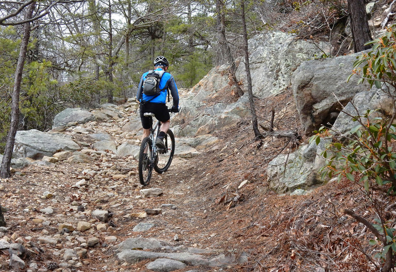 Veach Gap Trail (near the top) is littered with techy rock moves.