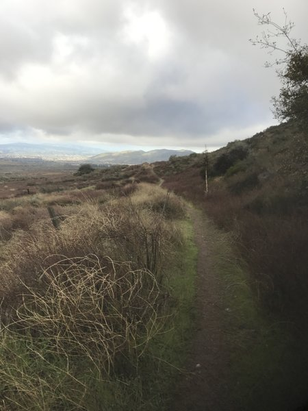 This is the view from the singletrack on the northern edge of El Dorado Ranch Park. Looking to the west, Crafton Hills can be seen in the distance with Yucaipa to their left.