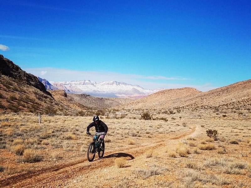 Golden grass, blue skies, sunshine, snow-covered mountains, and tacky trails equal a very happy rider!!