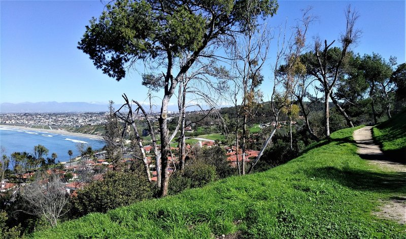 Enjoy this nice view of South Bay from the top of Upper La Costa Fire Station Trail.
