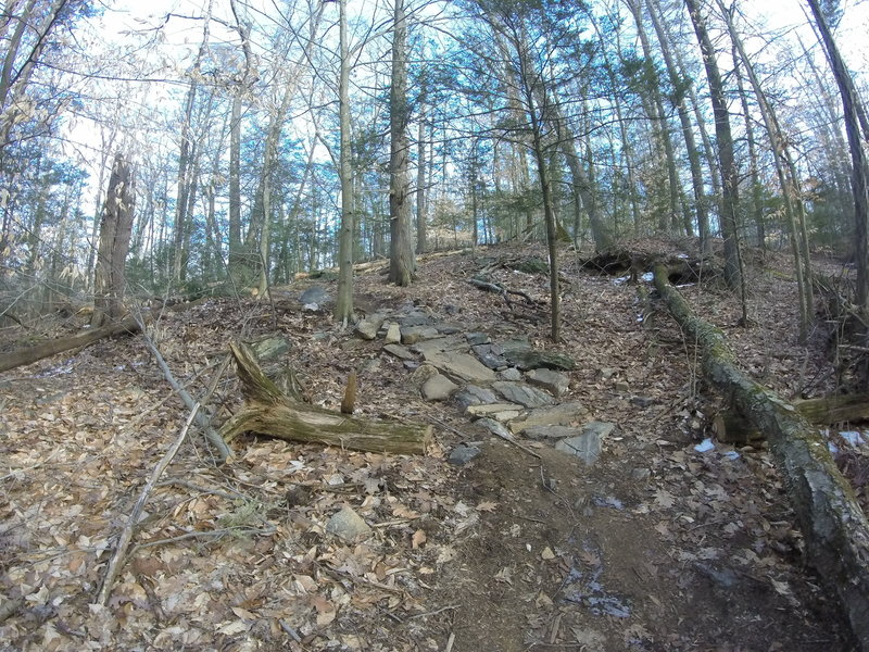 There's a small rock garden in the last turn along the Green Trail.