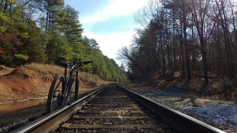 This is one of two railroad crossings on the Long Cane Horse Trail.