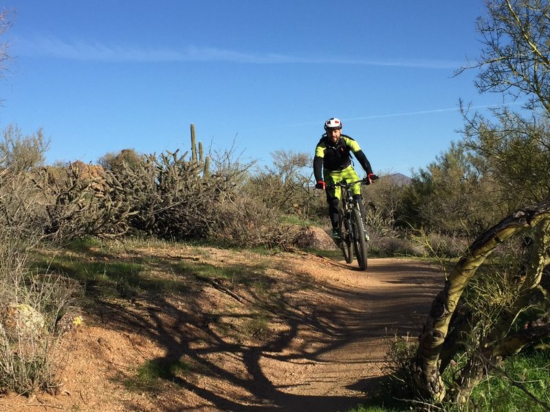 Cruise the buff singletrack along the perimeter of Brown's Ranch for a great time!