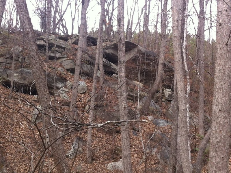 Enjoy this nice rock outcropping on the Frady Branch Loop Trail.