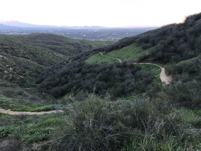The Thunderbird Trail twists and turns its way up Crafton Ridge.