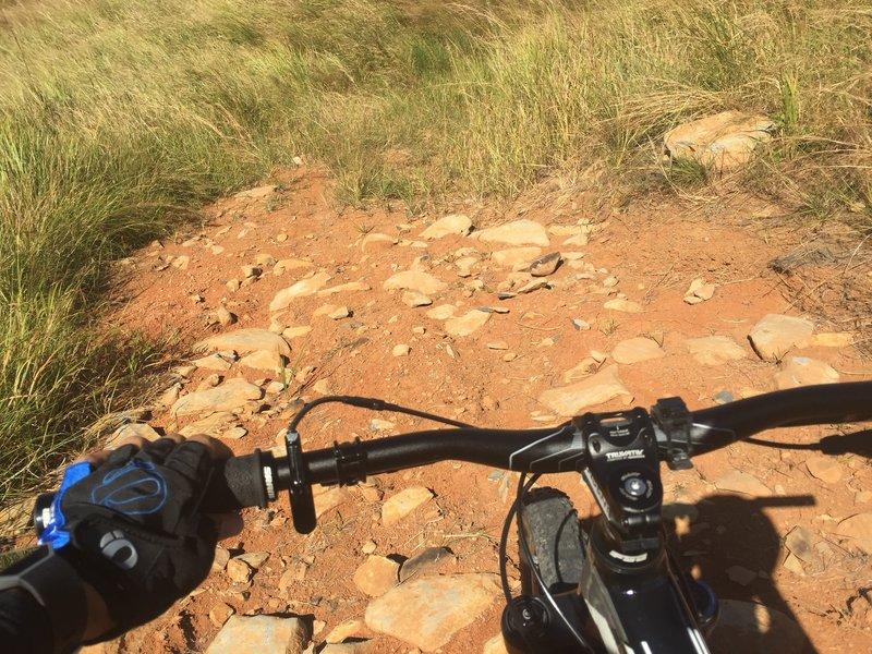 Navigate this steep descent through a rock garden along the Mt. Williams Trail.