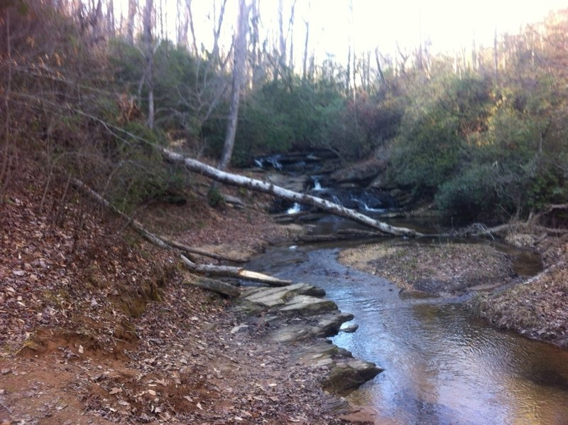 Stop and enjoy the view of Nancytown Creek, which parallels a portion of the Sourwood Trail.