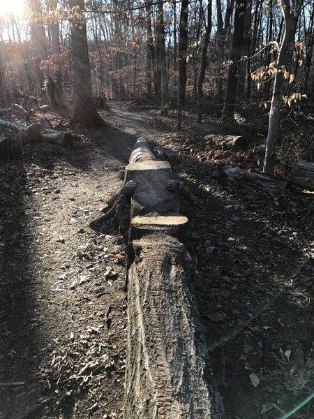 An optional trail side skinny.