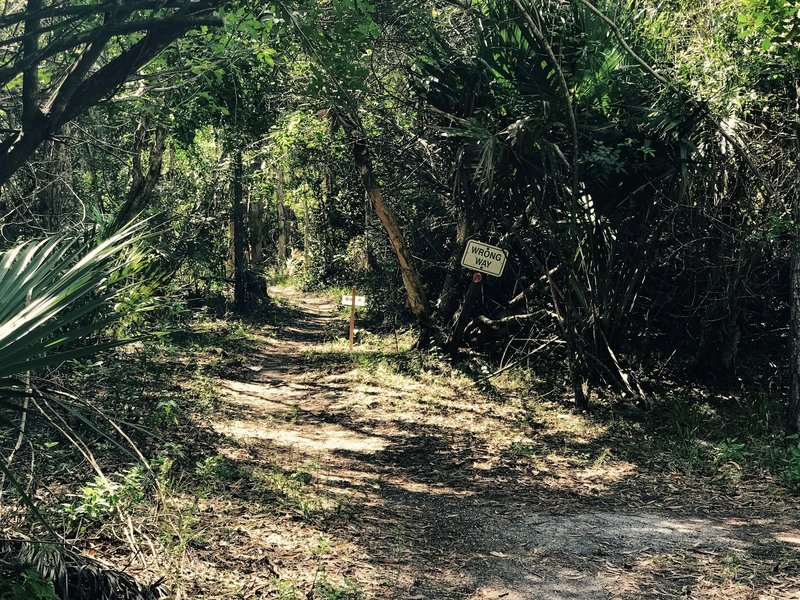 This is the trail exit. Be sure to ride the trail the right direction!