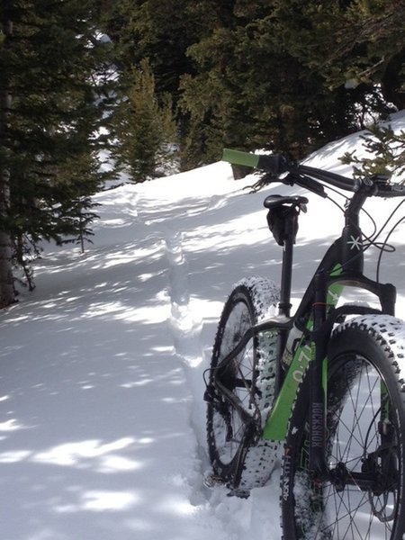 Winter means fresh tracks on the climb from Rainbow Lakes along South Sourdough.