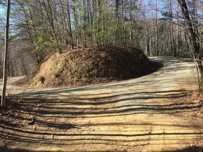 This is just one of a 'zillion switchbacks you'll encounter along Maple Sally Road.