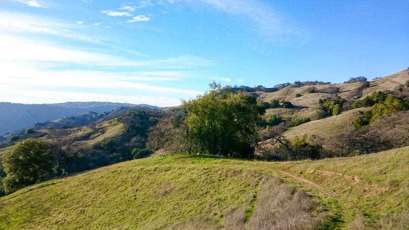 Green hillsides surround the Dexter Trail.