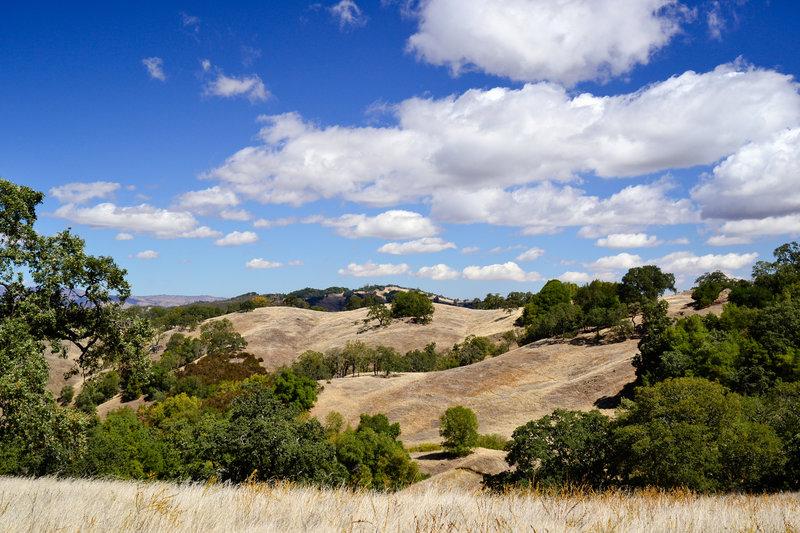 Enjoy beautiful views across the hills on Steer Ridge Road.