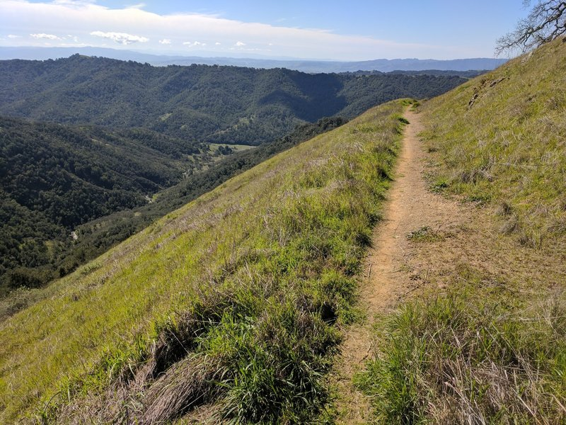 Heading down Lyman Wilson Ridge Trail, enjoy these phenomenal views.