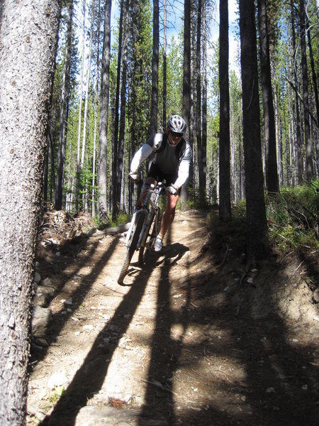 Enjoy tall trees and nice dirt on this downhill.